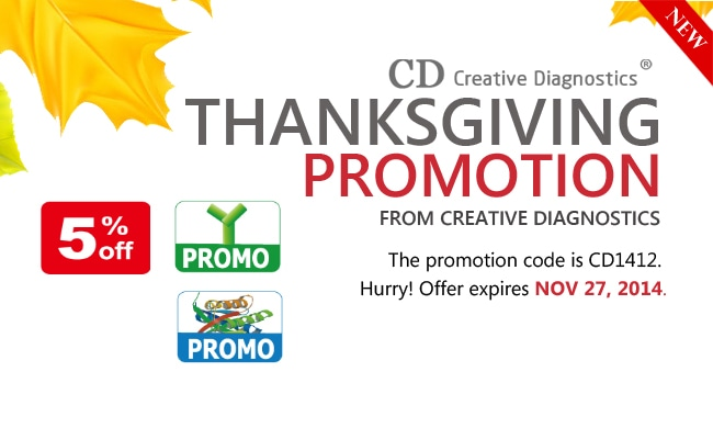 Thanksgiving Promotion Creative Diagnostics