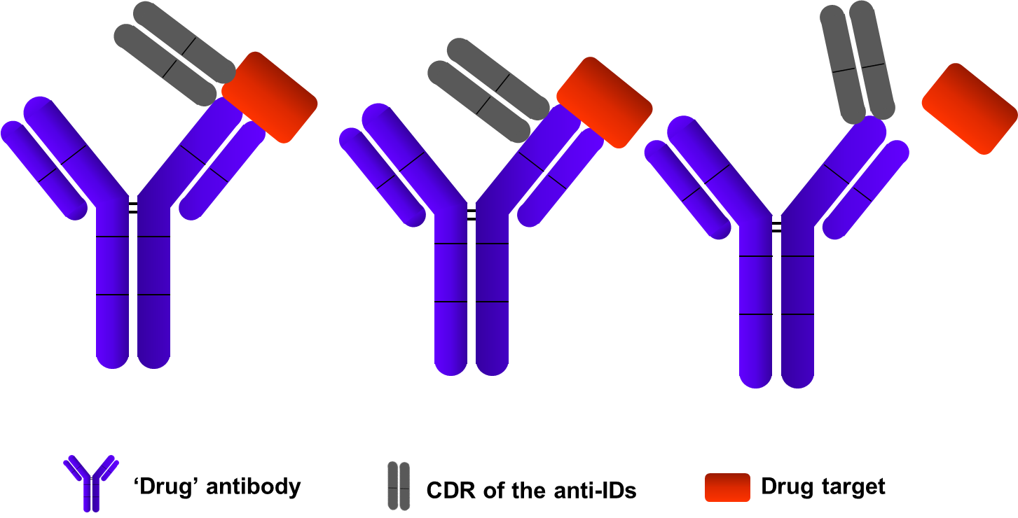 ELISA assays development