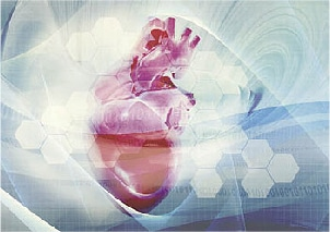 Image result for Cardiac Biomarkers Testing
