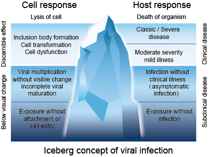 Iceberg concept of viral infection