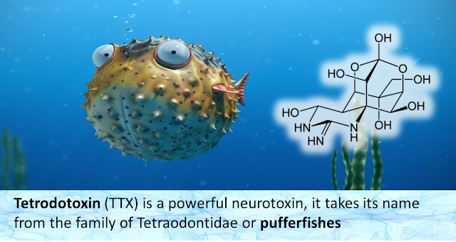 New Products for Tetrodotoxin (TTX) Analysis