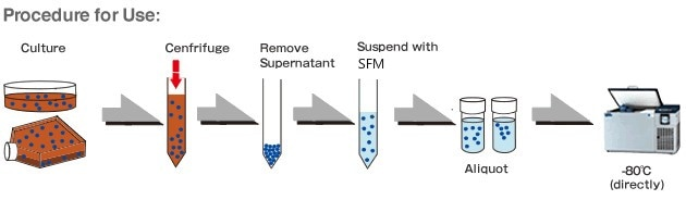 Serum-Free Cell Freezing Medium - Creative Diagnostics