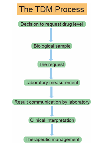 The process of therapeutic drug monitoring.